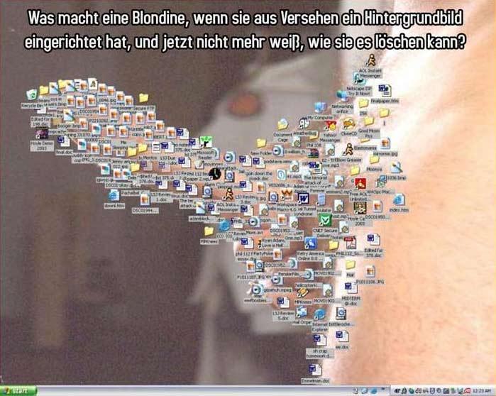 Desktop Hintergrund Bild Lustich De