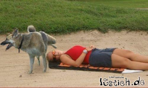 [Image: 13255-gemeiner-hund.jpg]