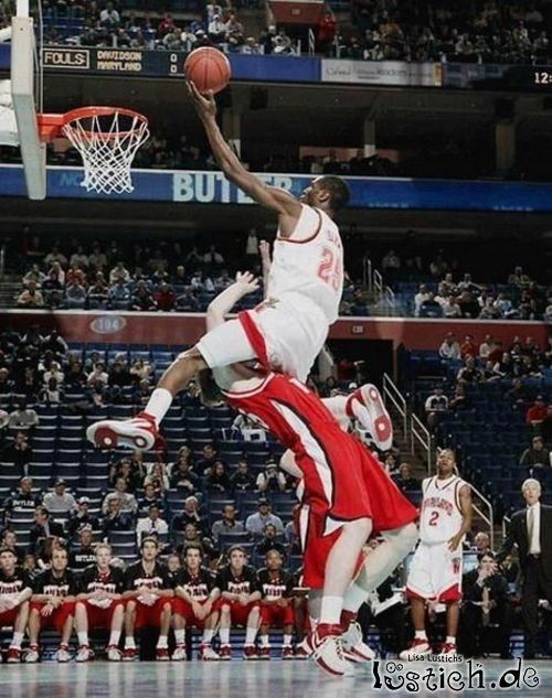 basketball bilder