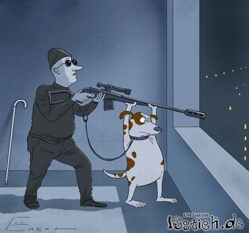 Blindenhund Hilft Bei Der Arbeit Bild Lustich De