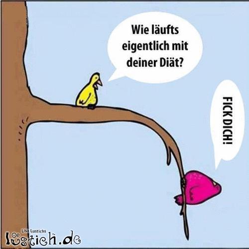 Diät Bild - lustich.de: lustich.de/bilder/cartoons/diaet