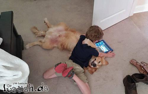 spiele mit dem hund