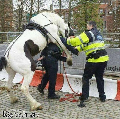 Fick die Polizei