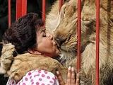 Frau küsst Löwe