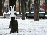 Schneehase am Baum