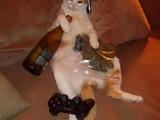 Sofa-Katze