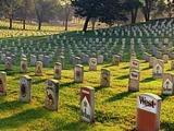 Friedhof der Zigaretten