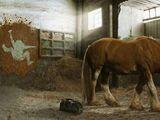Unfall im Pferdestall