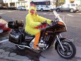 Biker-Chick