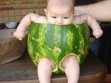 Melonenwindel