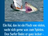 Hai frisst Surfer