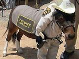Unser Sheriff
