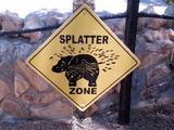 Splatter-Zone