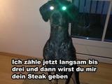 Gib mir dein Steak!