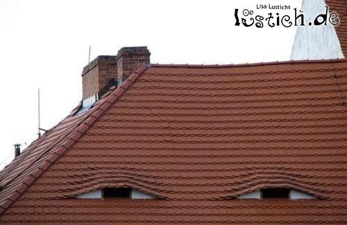 Dach mit Augen