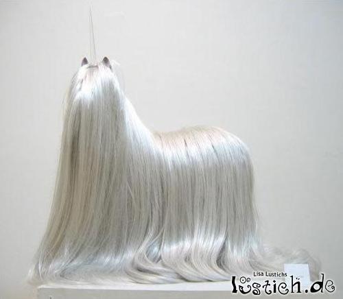 Langhaarhund Bild Lustich De