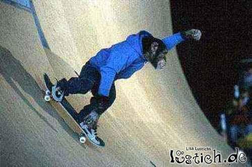 Skater Affe