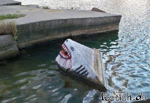Hai Im Wasser Most Dangerous Places For Sharks