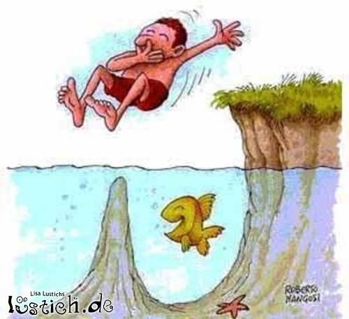 Sprung ins Wasser Bild - lustich.de