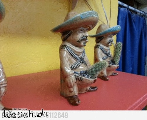 Kaktushalter