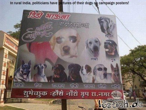 Wahlkampf in Indien