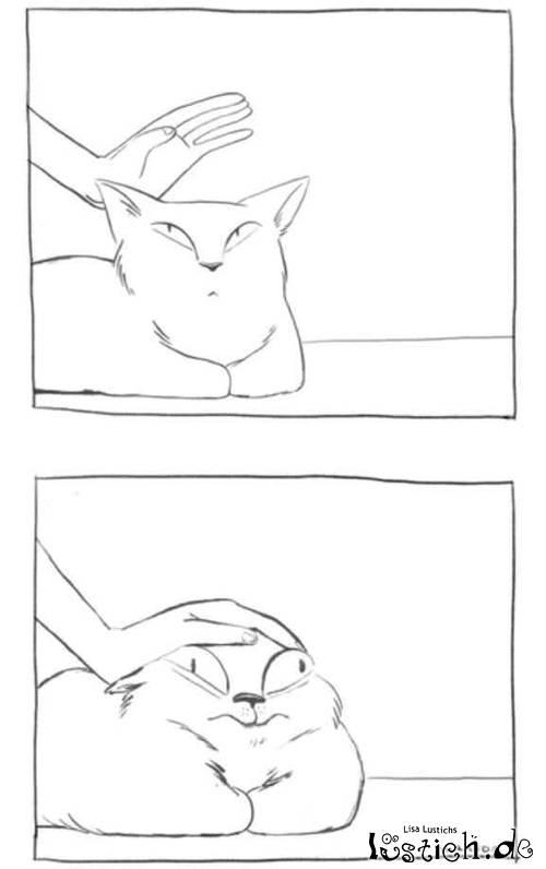 Katze streicheln