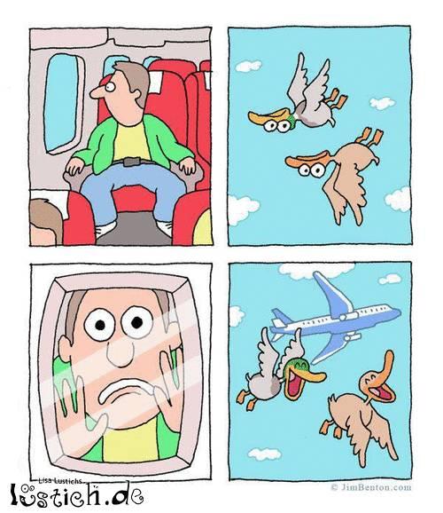 Entenflug