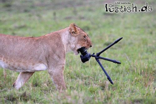 Doofe Kamera
