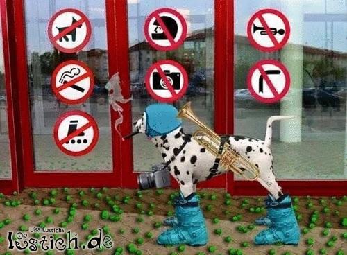 Verbote