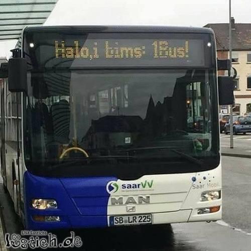 I bims 1 Bus