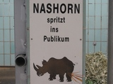 Nashorn spritzt