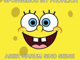 Spongebobs Wangen