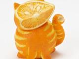 Orangenkatze