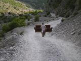 Möbeltransport in Albanien