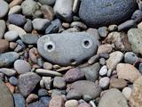 Erschrockener Stein
