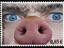 Schweinemarke