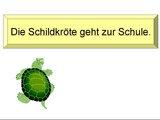 Die Schildkröte geht zur Schule.